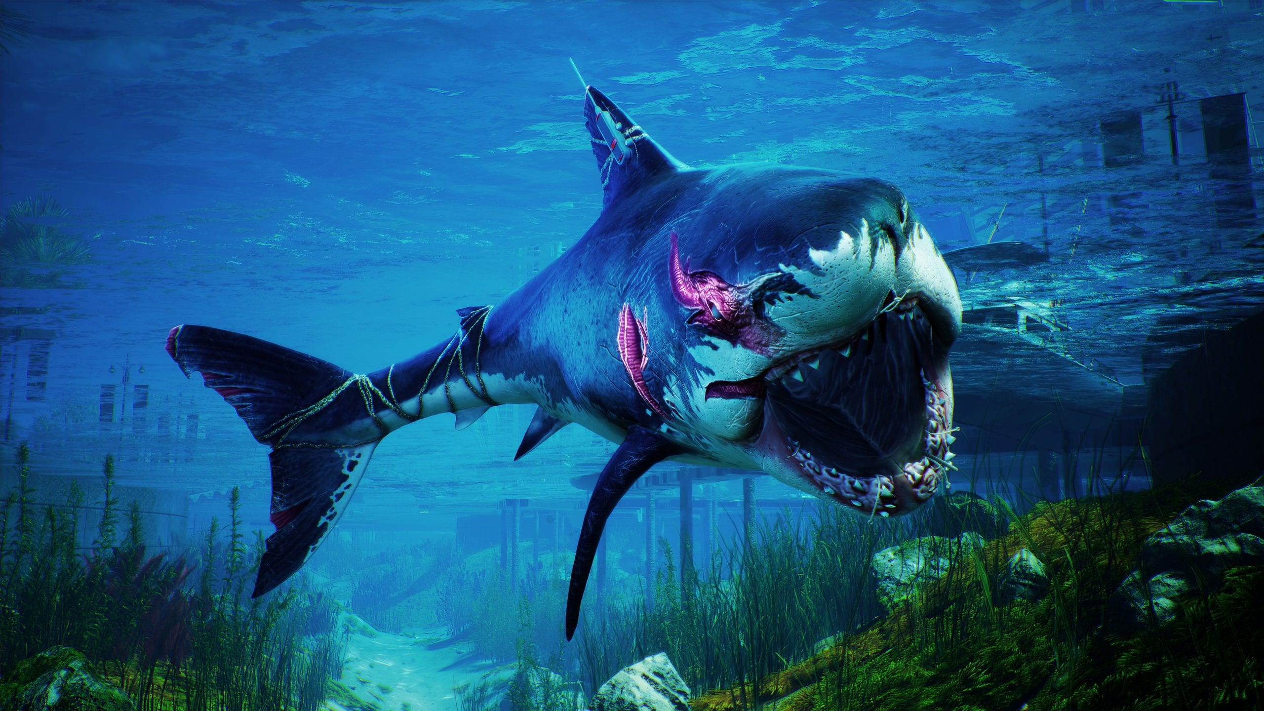 """G2G S5E22 – Maneater the SharkPG, Xenoblade, and Other RPGs – """"Bioelectric Fins and Stuff"""""""