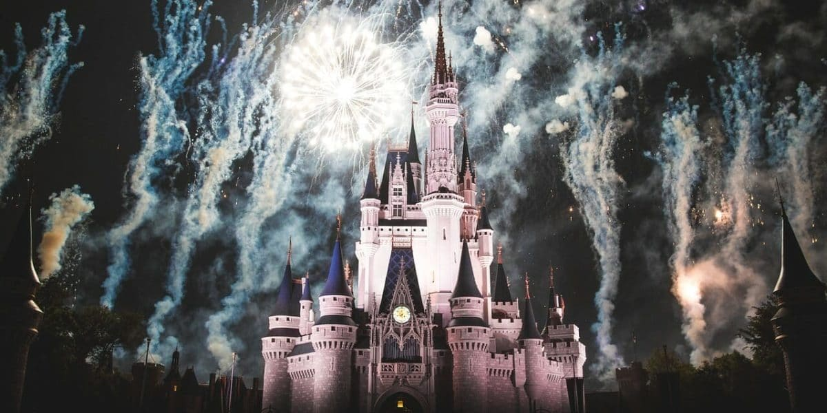 Disney Castle with Fireworks at night