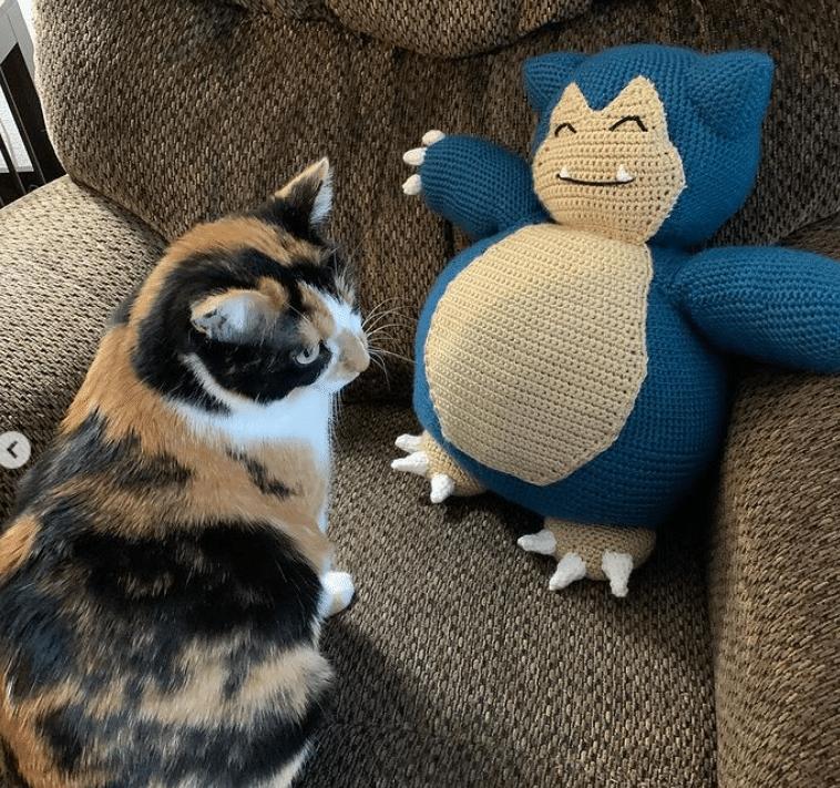 Snorlax next to my cat