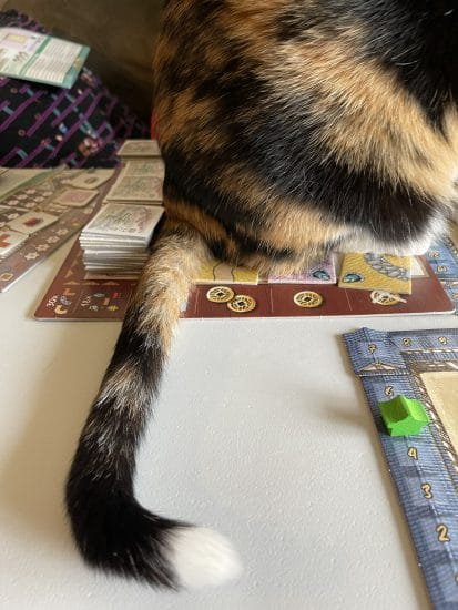 Lily's tail on the board