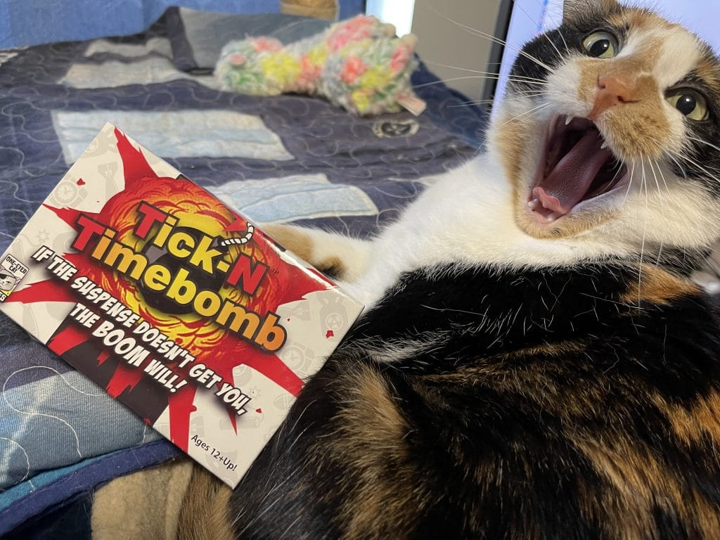 Lily Cat Yawning next to Tick-N Timebomb