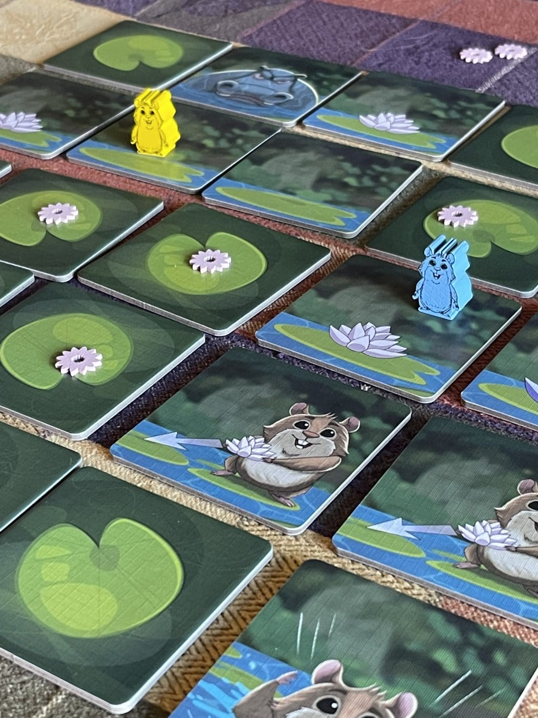 The game board and meeples